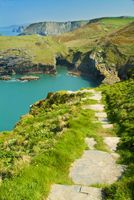 Paths along the cliffs, Tintagel
