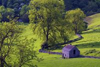 Cotttage at Dovedale