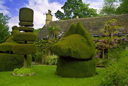 Haddon Hall topiary