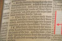 A copy of the 16th century 'Breeches Bible'