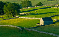 Stone walls at Malham, Yorkshire Dales
