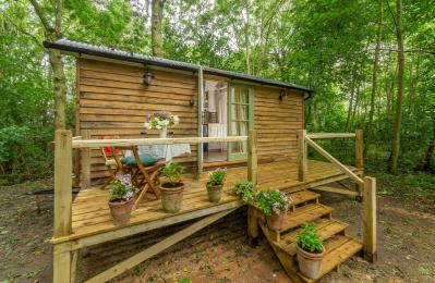 Woodland Retreat Shepherd's Hut, Brundish