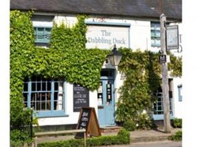 The Dabbling Duck, Great Massingham