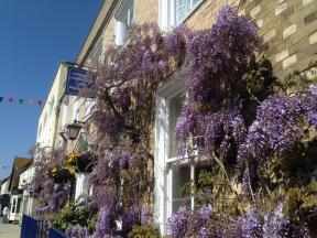 Wisteria House Lymington