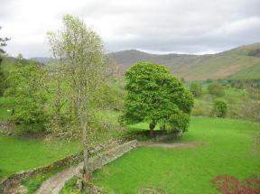 High Fold Guest House Troutbeck