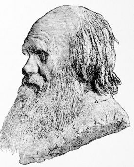 Charles Darwin, from a medallion by Alphonse Legros