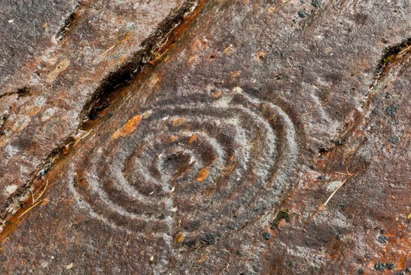 Achnabreck Cup and Ring Marks photo, Concentric rings closeup