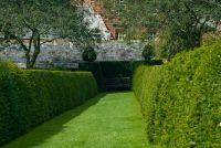 Acorn Bank, Garden Hedges