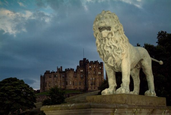 Alnwick Castle photo, The Percy Lion