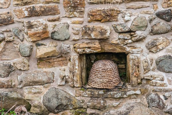 Annet House Museum and Garden photo, A skep, or traditional wicker beehive set into the garden wall