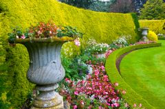 Formal flower beds