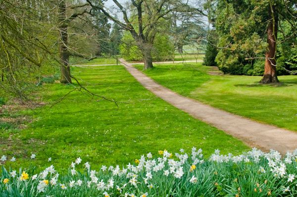 Audley End House photo, East Park wooded path
