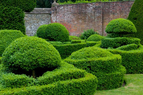 Avebury Manor and Garden photo, Topiary features in the garden