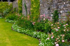 A sinuous walled garden border