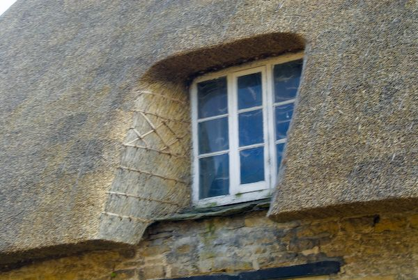 Bampton photo, Thatched cottage detail
