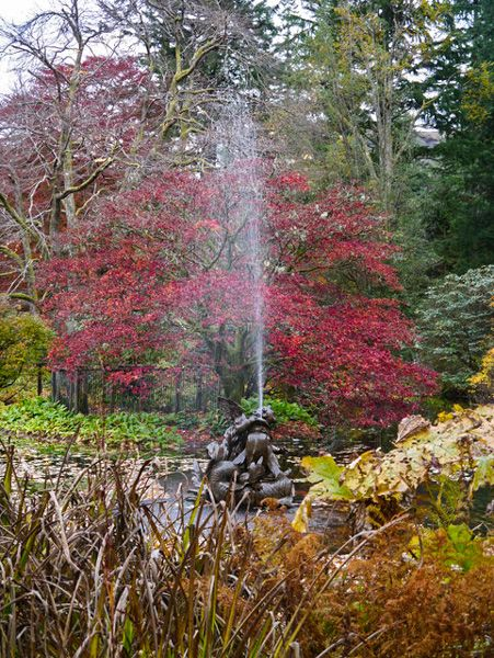 Benmore Botanic Gardens photo, A fountain the The Pond (c) James T M Towill