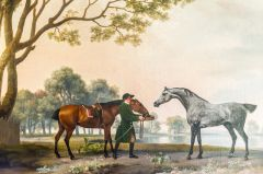 An equine painting by Stubbs in the Picture Gallery