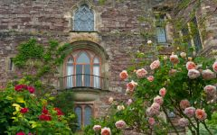 Berkeley Castle from the gardens