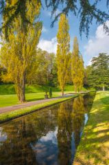 Bicton Park Botanical Gardens, The canal beside the Mirror Pond