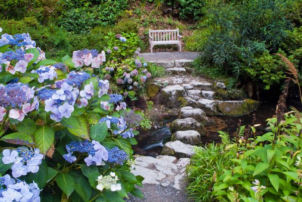 Bodnant Garden photo, Stepping stones across a stream
