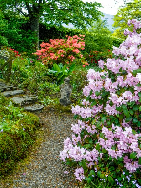 Bolfracks Garden photo, A simple garden path
