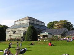 The main glasshouses (c) Finlay McWalter
