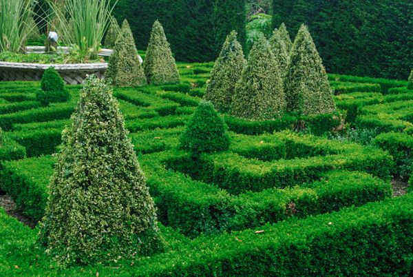 Bourton House Garden photo, The Knot Garden