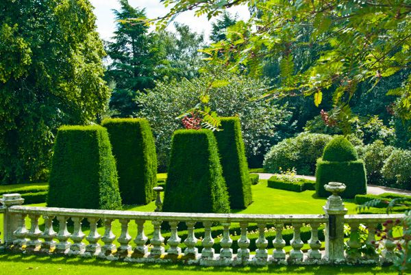 Bowhill photo, Formal garden with topiary