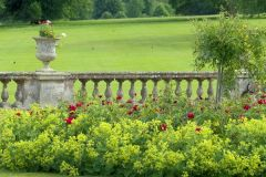 Bowood House and Gardens, The colourful garden in bloom