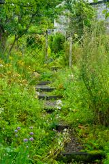 A garden path to Brantwood pier