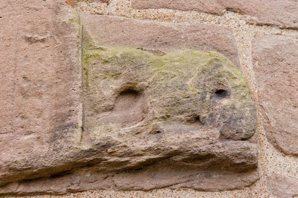 Brechin Cathedral Round Tower photo, Carved animal figure 2
