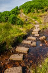 Stepping stones on the Bronte Way trail
