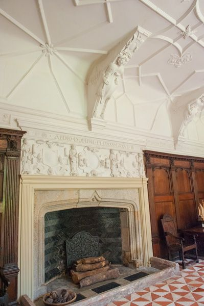 Buckland Abbey photo, Great Hall fireplace