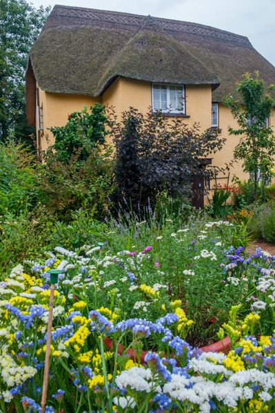 Budlake Old Post Office Room photo, Colourful summer flowers in the cottage garden