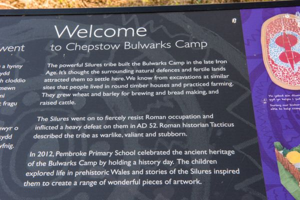 Chepstow, Bulwark Camp photo, Local school information panel about the Bulwarks Camp