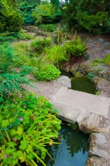 A small rill runs through the garden