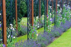 Cast iron arches act as a garden backdrop