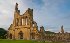 Byland Abbey, late evening light
