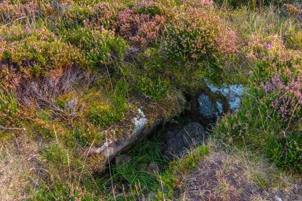 Cairn o'Get photo, Stone cist beside the path