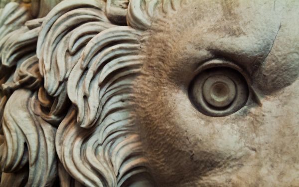 Chatsworth photo, Eye of a lion statue