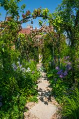A colourful pathway in the formal garden