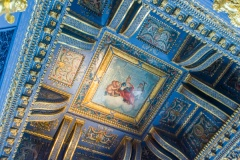Blue Velvet Room ceiling