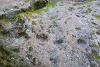 Clava Cairns, Cup and Ring marks