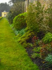 Clevedon Court, The terraced garden on a rainy day