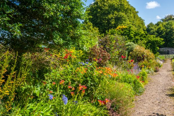 Clovelly Court Gardens photo, A colourful garden border