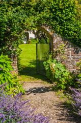 A garden path and gate