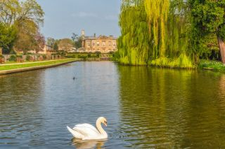 Coombe Abbey Country Park