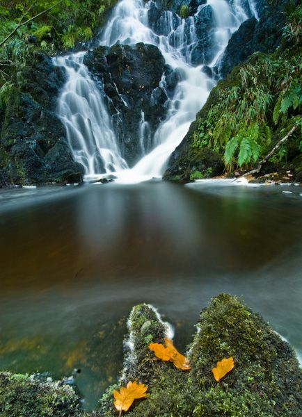 Wood of Cree photo, Waterfall 4
