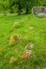 Croft Moraig Stone Circle, The rubble bank and kerb stones