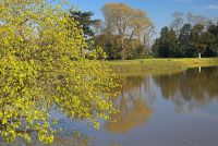 Croome Park, The lake